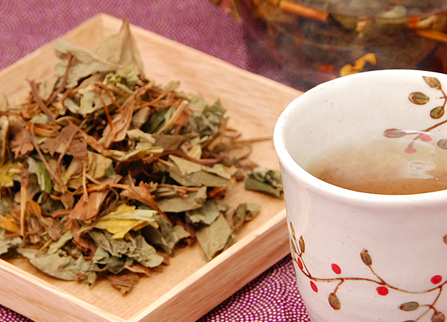 どくだみ茶の香りは独特だけど栄養成分が満点!副作用には注意が必要?