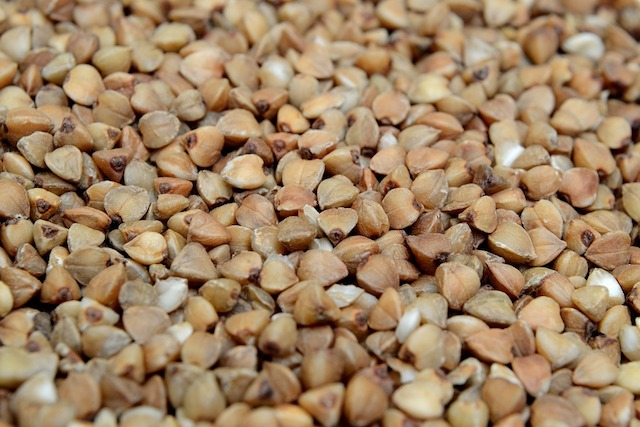 buckwheat-2856467_960_720